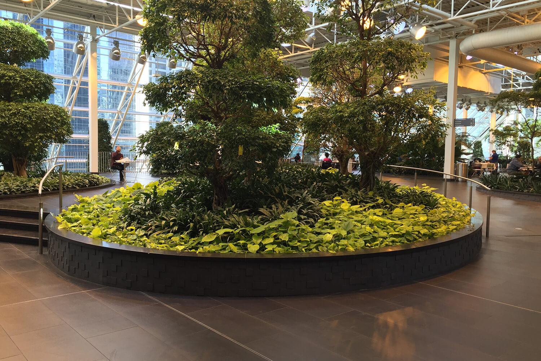 Jardin botanique Devonian